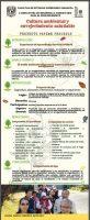Cultura ambiental y envejecimiento saludable
