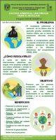 Cultura ambiental: una mirada desde el reciclaje